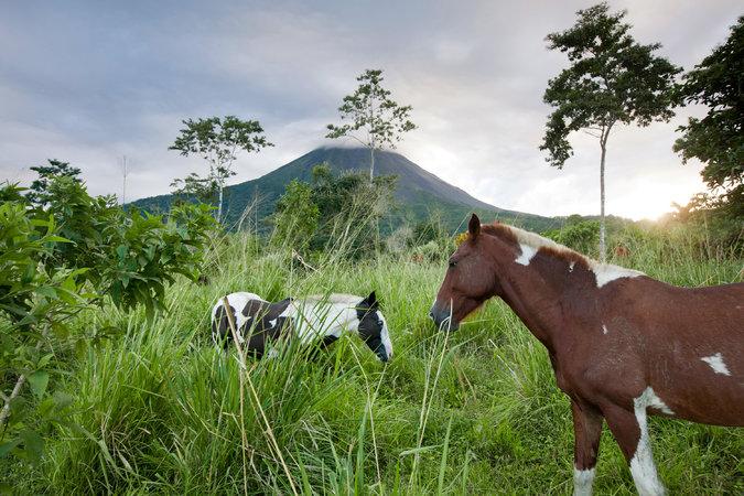 NYtimes Spring Break trips Costa Rica