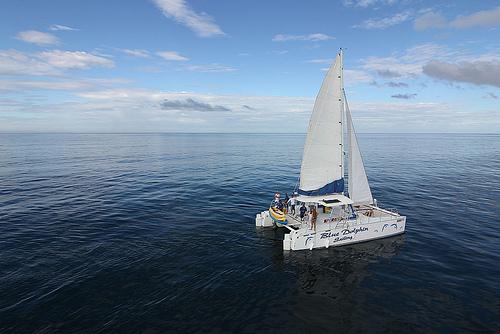 Blue Dolphin Sailing Tamarindo Costa Rica