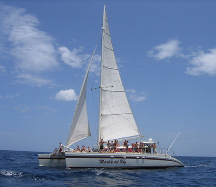 Marlin Del Rey Tamarindo Costa Rica